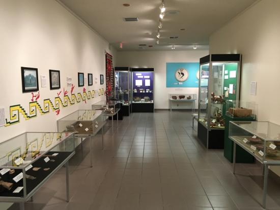Pre-historic living wing  - Picture of El Paso Museum of