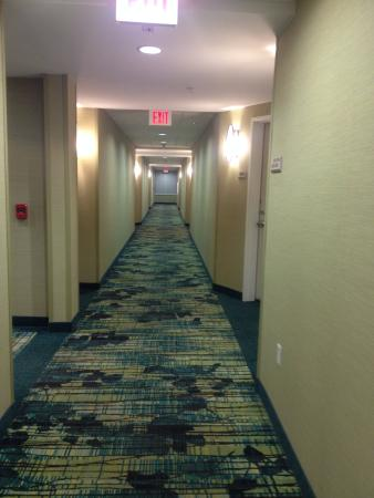 SpringHill Suites Lafayette South at River Ranch: Hallway