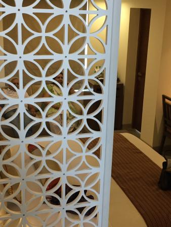 Lazylagoon Sarovar Portico Suites Photo