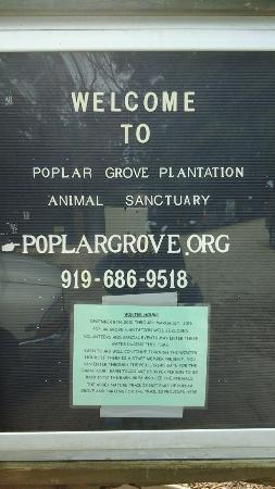 Poplar Grove Plantation: Seasonal Sign