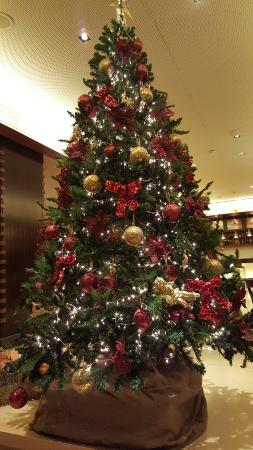 Le Commodore Hotel: christmas tree, so nice