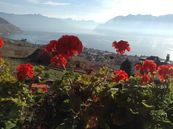 Grandvaux, Schweiz: La vue de notre table