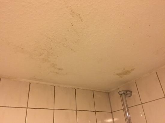 Schimmel an der Decke über der Dusche - Picture of Kolossos Hotel ...
