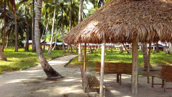 Resort beach picture of el dorado beach resort havelock for El dorado cabins