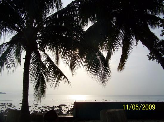 Dolphin Resort: Beach area