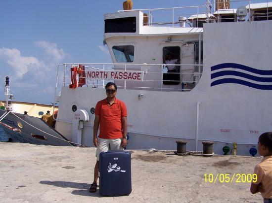 Dolphin Resort: Port