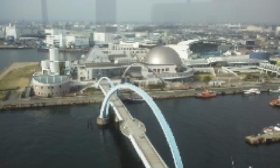 Nagoya Port Building: 屋上展望台から、直下の港を眺める