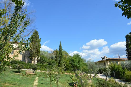 Podere Oliveta: the  two houses