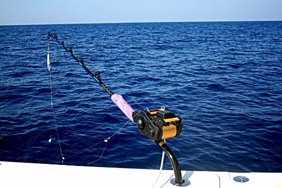 Crest Fishing