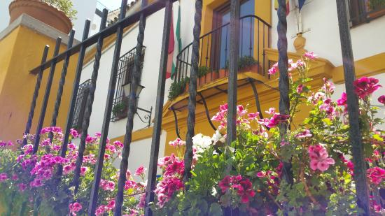 Photo of Casa de los Naranjos Córdoba
