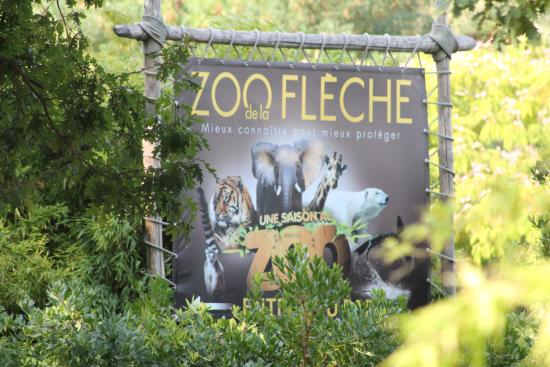 maki picture of zoo de la fleche la fleche tripadvisor. Black Bedroom Furniture Sets. Home Design Ideas
