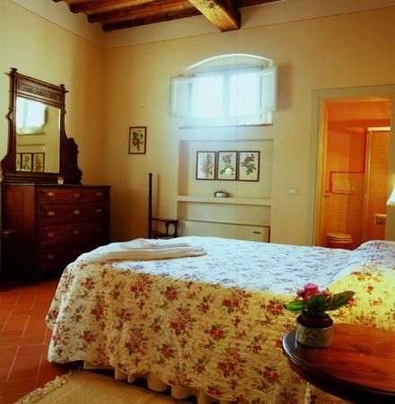 Gambassi Terme, Italia: camera