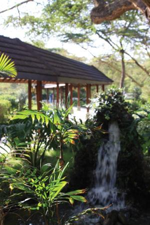 Lake Naivasha Simba Lodge : Rock Fountain at the Reception