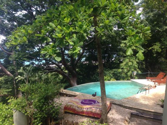 Gumbo Limbo Villas: photo1.jpg