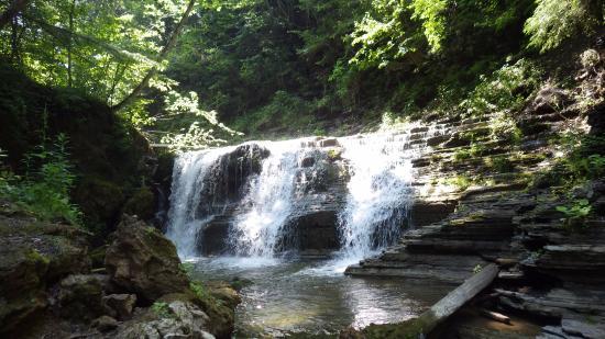 Van Hornesville, NY: On the trail