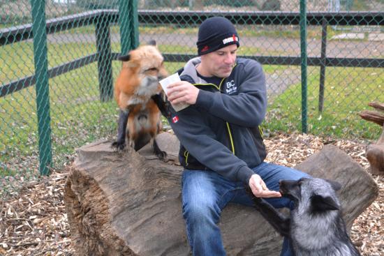Orono, Καναδάς: Todd and rufus