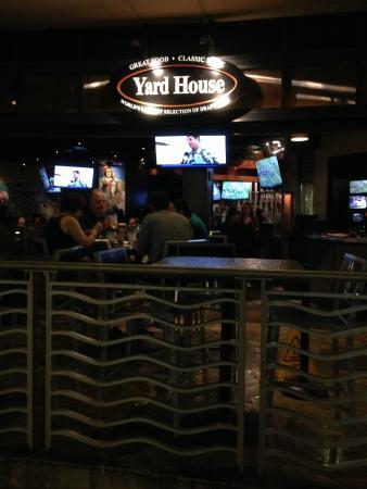 Yard House: いつもにぎなかな店内