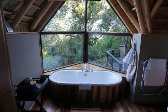 The Phantom Forest Eco-Reserve: Unique bathtub