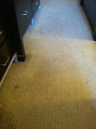 Livingston, Nueva Jersey: Disgusting stained rug