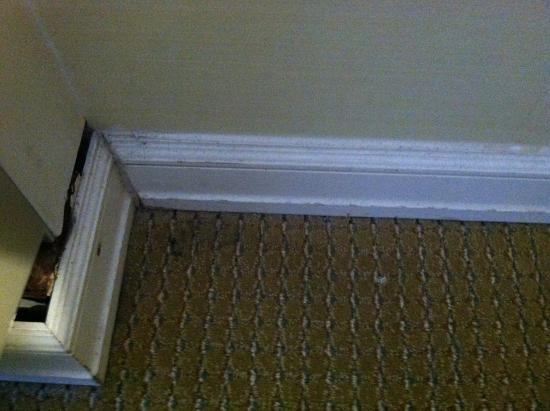 Livingston, NJ: Dusty and dirty baseboards