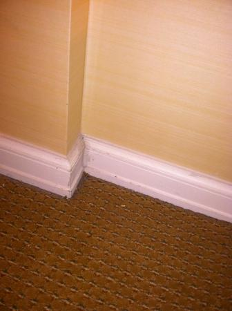 Livingston, Nueva Jersey: Dirty dusty baseboards