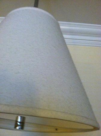 Livingston, NJ: Thick layer of dust on lampshade over settee