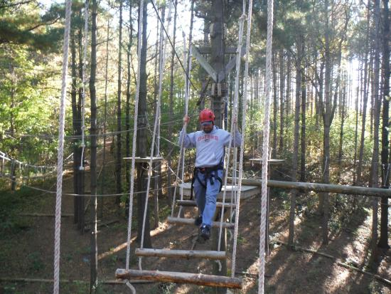 Lake Geneva Canopy Tours One Step At A Time On The High Ropes Course