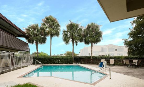 Red Roof Inn Tampa Busch : Pool