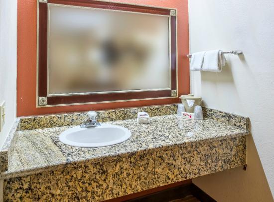 Red Roof Inn Tampa Busch: Vanity