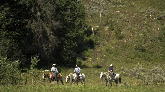 Gallatin Gateway, มอนแทนา: A family favorite - A trail ride through the Gallatin National Forest
