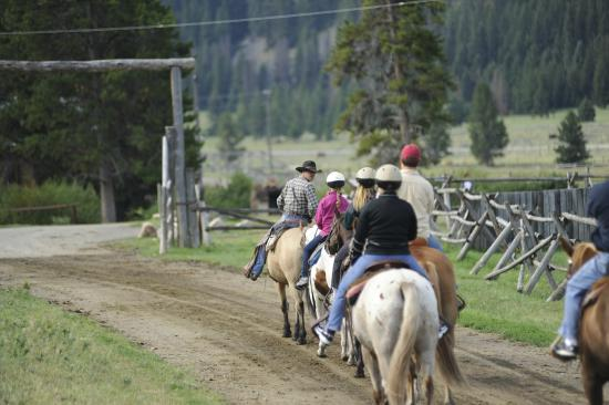 Gallatin Gateway, MT: Headed from the barn on a trail ride