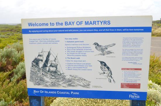 Peterborough, Australia: Птицы в Bay of Martyrs
