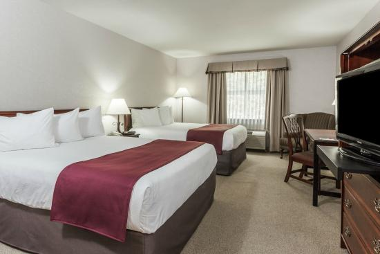 Quality Hotel & Conference Centre : Twin Queen Room