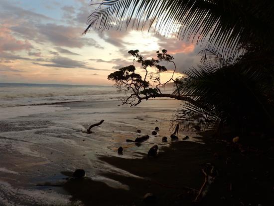 La Leona Eco Lodge: high tide and sunset
