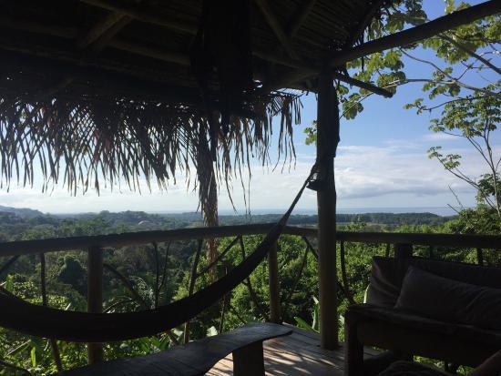 Palma Quemada, Costa Rica: photo2.jpg
