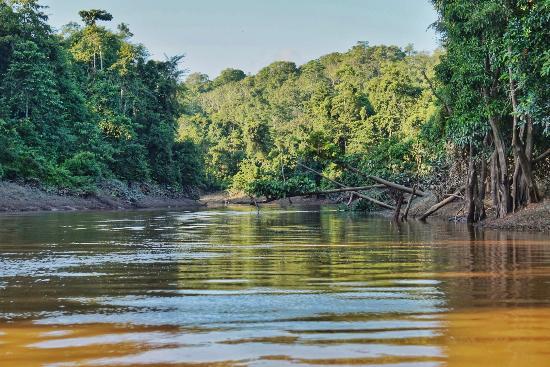 Sandakan Division, มาเลเซีย: The river