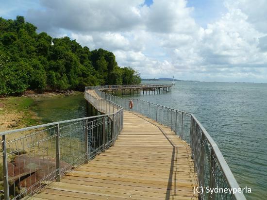 Boardwalk on Pulau Ubin