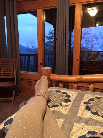 Brother's Cove Log Cabin Rentals: Perfect Place but Persistent Pests (Insects)
