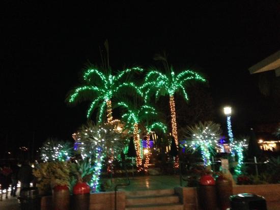 Dana Point, Kalifornia: Happy Holidays!