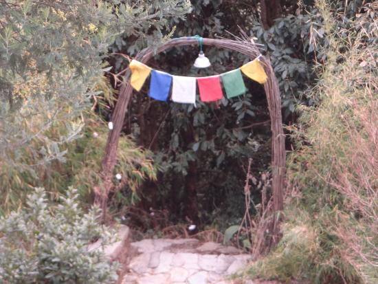 alaska birding lodge