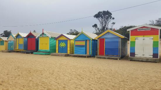 The Colorful Brighton Beach Bathing Bo