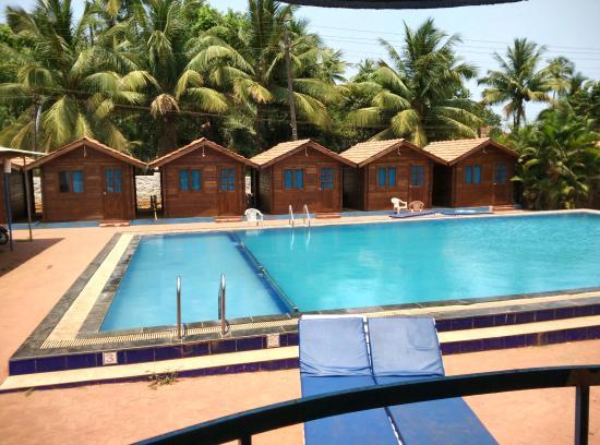 Arambol Plaza Beach Resort Goa Hotel Reviews Photos Rate Comparison Tripadvisor
