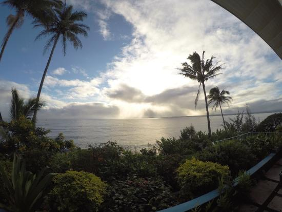 Best Bed And Breakfast In Hilo Hawaii