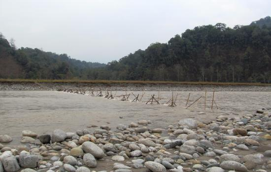 Noa-Dihing river, Namdapha National Park, Arinachal Pradesh