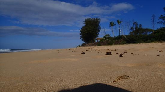 in cottages the world barking kauai sands beaches beach pmrf on best