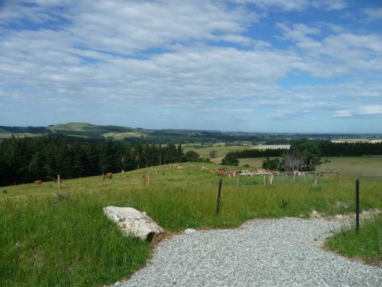 Te Ana Maori Rock Art: View from the carpark.
