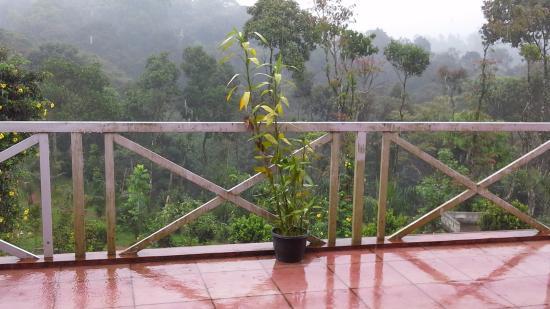 Eletaria Resort: View from top floor room