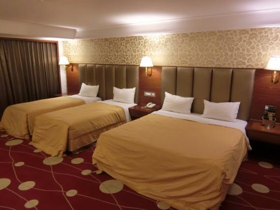 Chyuan Du Spring Resort : 房間內部
