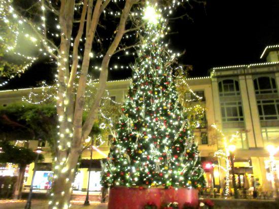 Santana Row Christmas Tree 2020 Christmas Tree, Santana Row, San Jose, Ca   Picture of Santana Row