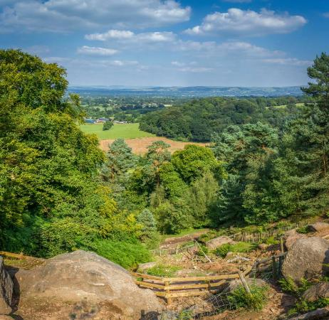 Alderley Edge Woodland Walk